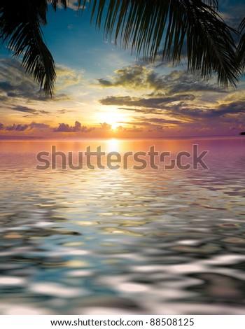 Calm Ocean Overhanging Branch - stock photo
