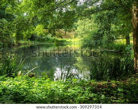 Calm pond in a rural countryside somewhere in Wales - stock photo