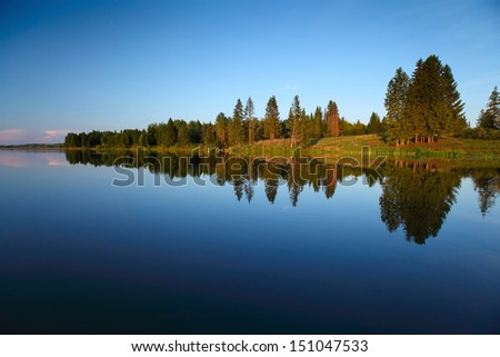 Calm pond with pine trees on the coast