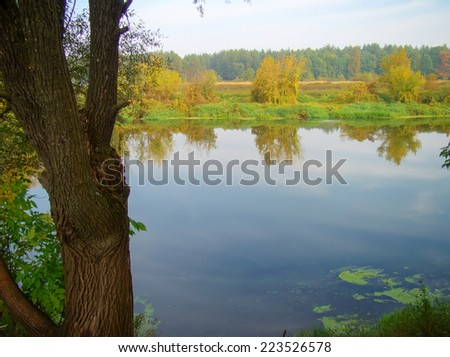 Calm river in autumn forest in the morning time. - stock photo