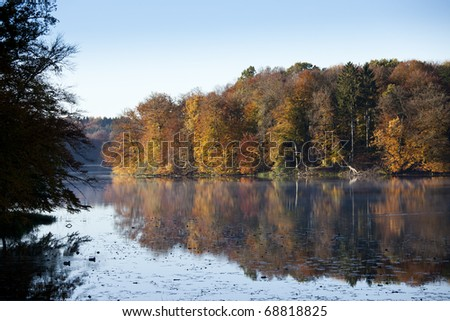 Calm scene of a lake in sweden at autumn, colors are rich and orange this time of the year