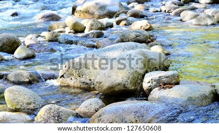 Calm water flows in the forest - stock photo
