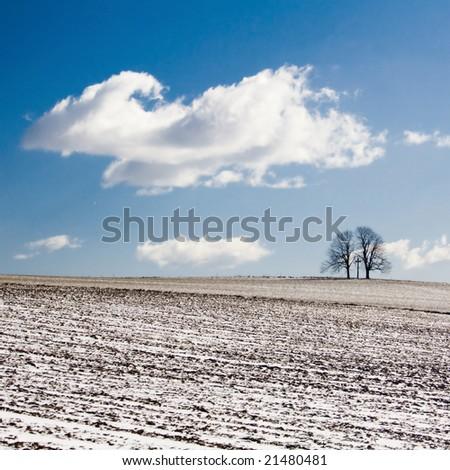 Calvary in winter - stock photo