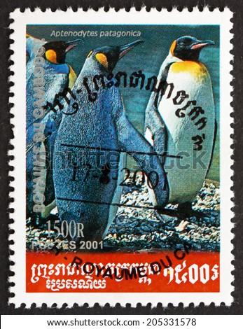 CAMBODIA - CIRCA 2001: a stamp printed in Cambodia shows King Penguin, Aptenodytes Patagonica, Penguin, circa 2001 - stock photo