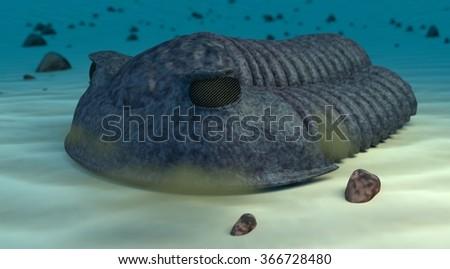 Cambric trilobite render - stock photo