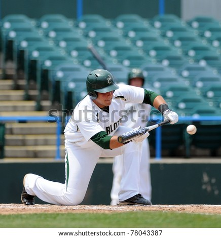 CAMDEN, NJ - MAY 26: Charlotte 49'er catcher Ross Steedly squares to bunt during an Atlantic Ten baseball tournament game against Charlotte on May 26, 2011 in Camden, NJ. - stock photo