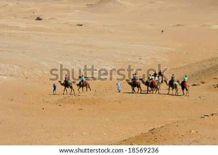 Camel caravan going through desert.