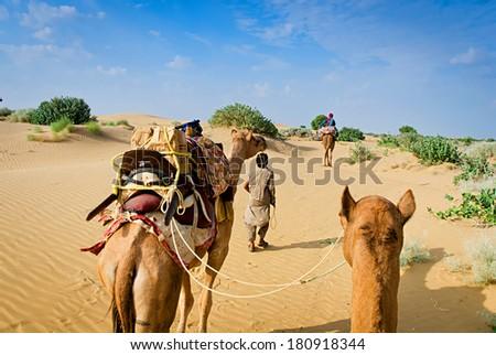 Camel caravan going through the sand dunes in desert, Rajasthan, India - stock photo