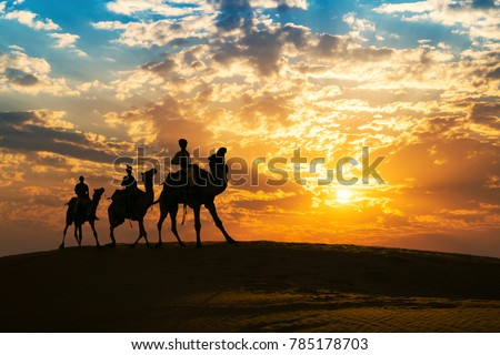 Camel caravan in silhouette at sunset at Thar desert, Jaisalmer Rajasthan, India.
