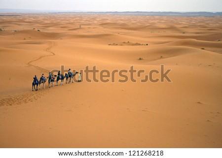 Camel caravan, Morocco - stock photo