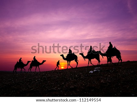 camel caravan silhouette with sunset - stock photo