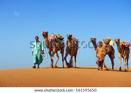 cameleers in desert - camels caravan on sand dune  - stock photo