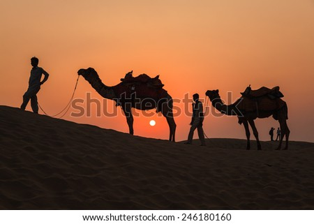 Camels and Sunset at Thar Desert in Jaisalmer, Rajasthan, India - stock photo