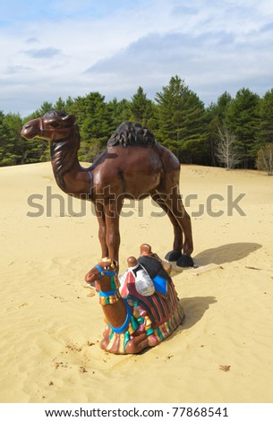 camels at the Desert of Maine sand dunes