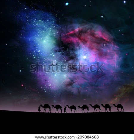 camels in the stars sky background. - stock photo