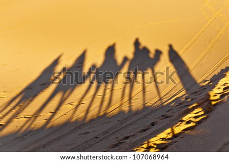 Camels shadows projected over Erg Chebbi orange sand dunes at Morocco - stock photo