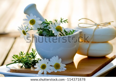 Camomile  herbs in a mortar. Alternative medicine, healthy cosmetics concept - stock photo