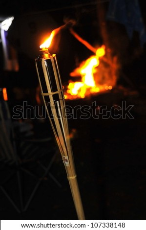 Bamboo fire torch