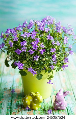 Campanula flowers in a pot and Easter rabbits on the vintage wooden table - stock photo