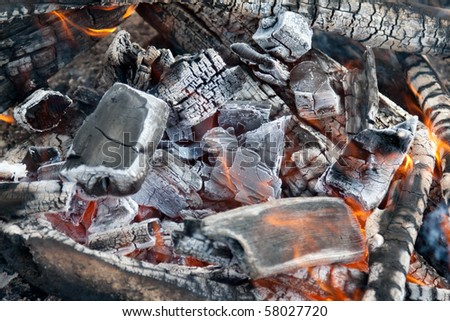 Campfire burning coal, black smoulderring wooden log