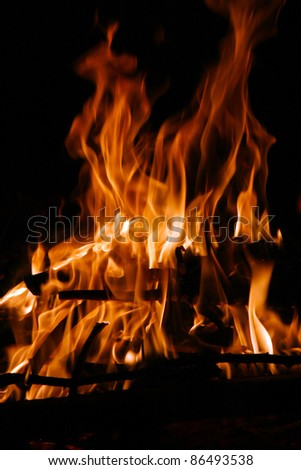 Campfire by night with beautyful flames - stock photo