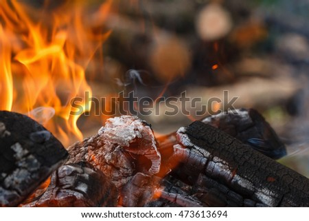 Campfire coals for picnic, outdoor forest closeup