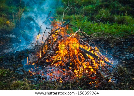campfire in forest - stock photo