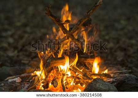 Campfire made out of collected dead branches burning in the forest. - stock photo
