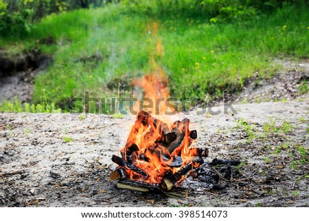 campfire on meadow in forest