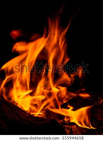 Campfire with burning fire flame - stock photo