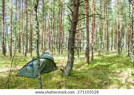 Camping in forest, Neringa, Lithuania - stock photo