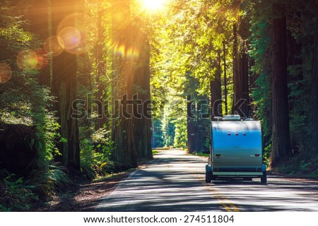 Camping in Redwoods. Travel Trailer RV on the Redwood Highway. California RVing. Camper on the Road. - stock photo