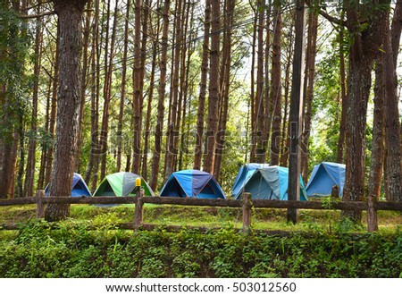 Camping tent at Angkhang hill north Thailand winter