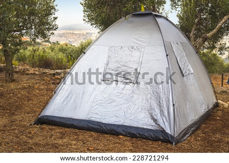 Camping tent between olive trees in the Galil - stock photo