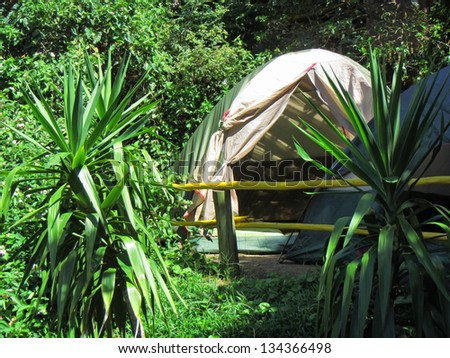 Camping tent in rainforest on sunny day. Shot near Ballito and Durban, North Coast of Kwazulu-Natal, South Africa. - stock photo