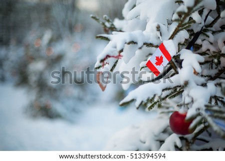 Canada flag Christmas holiday greeting card. Christmas tree covered with snow and Canadian flag. White winter scene background outdoor