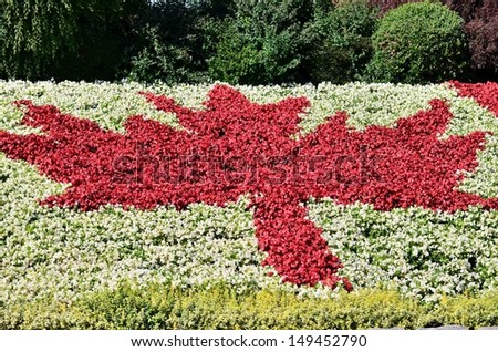 Canada flag shape flower garden - stock photo