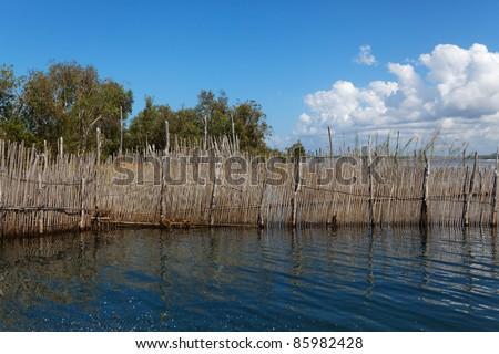Canal des Pangalanes Madagascar - stock photo