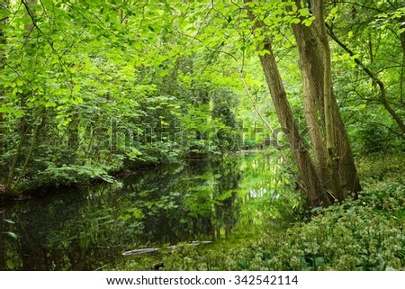 Canal in Stochemhoeve forest park in Leiden, the Netherlands - stock photo