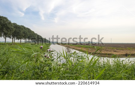 Canal through a rural landscape at fall - stock photo