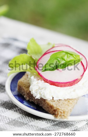canape with cheese and radish with black bread