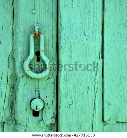 canarias brass brown knocker in a green closed wood  door  lanzarote abstract  spain