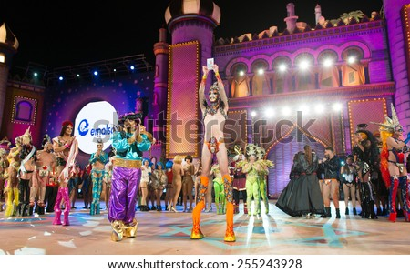 CANARY ISLAND, SPAIN - FEBRUARY 20, 2015: Drag Valkiria winner of the drag queen contest during Las Palmas Drag Queen Gala. Counselor of Las Palmas Juan Jose Cardona with Aladdin costume to the left. - stock photo