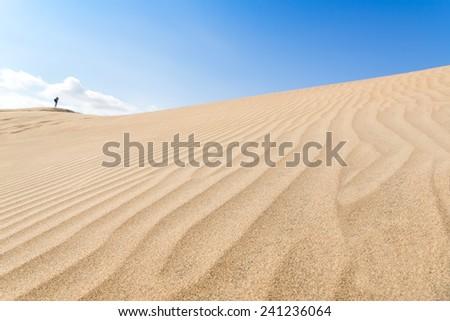 Canary islands, Maspalomas. Spain. Sand dunes. People on the horizon. - stock photo