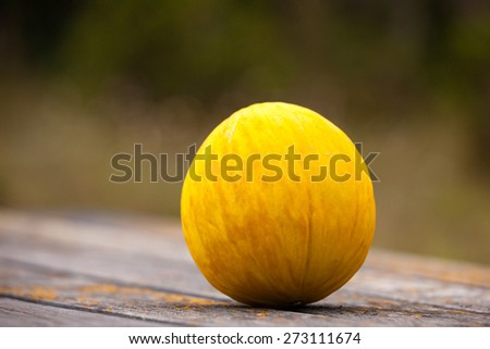 Canary melon on rustic table unfocused background - stock photo