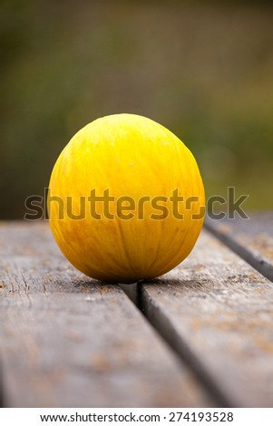 Canary melon outdoors on rustic wooden table - stock photo