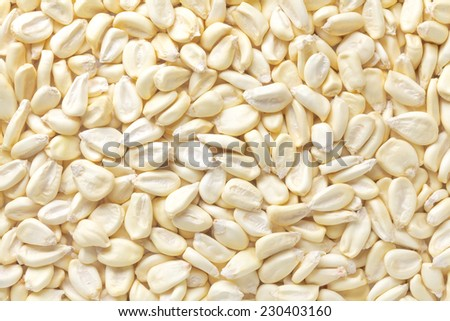 Cancha corn - stock photo