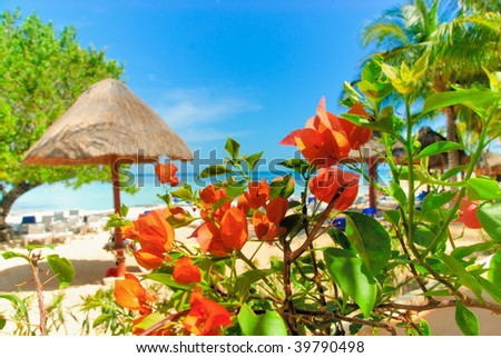 Cancun - stock photo