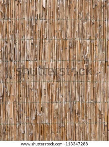 Cane background - stock photo