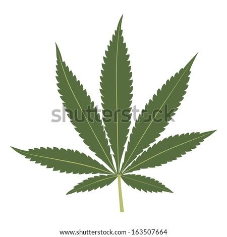 Cannabis leaf illustration isolated on white background. Marijuana leaf silhouette. - stock photo
